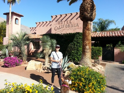 Cross-Country Road Trip: Los Angeles to Flagstaff via Palm Springs