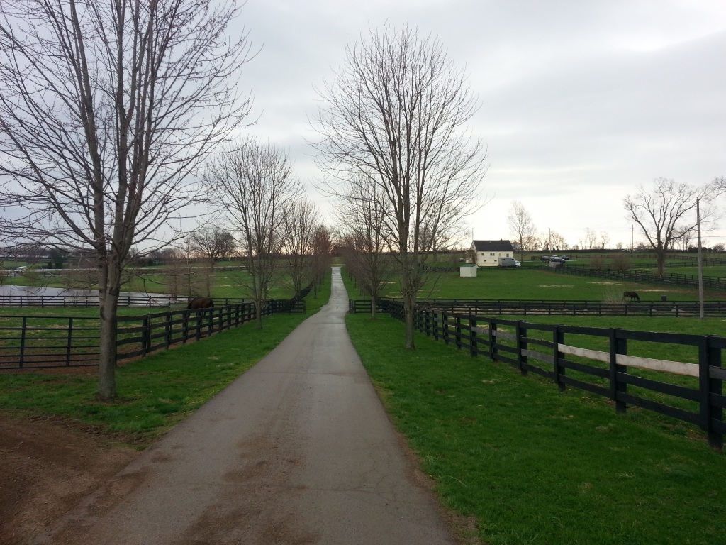 Road to Old Friends: Lexington, Kentucky