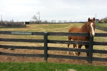 Cross-Country Road Trip: Louisville to Asheville, N.C., via Old FriendsFarm